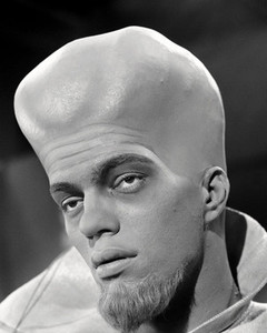 TLZ Baldhead